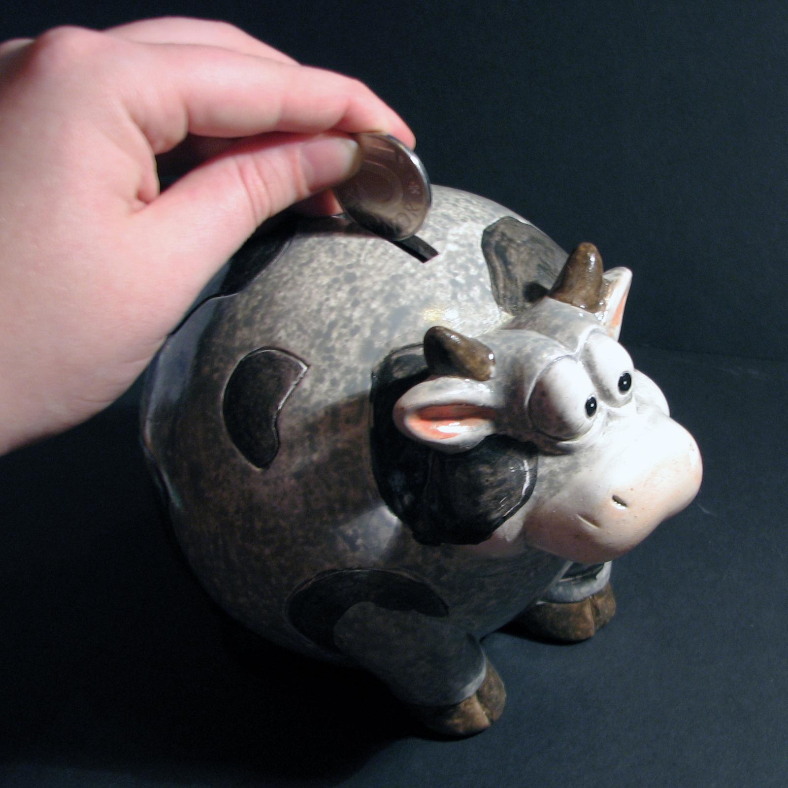 piggy-bank-1239661-1600x1600.jpg